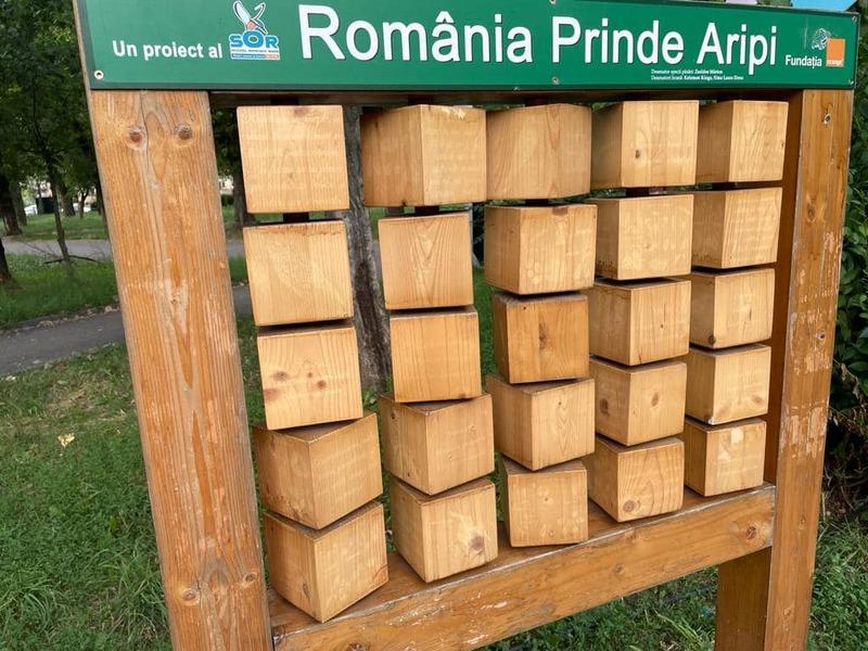 România needucată